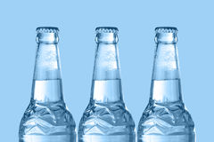 Graphic design of beer bottles Stock Image
