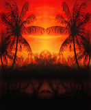 Graphic design collage with palm trees in sunset atmosphere. Stock Photo