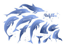 Graphic dolphins collection Royalty Free Stock Photo
