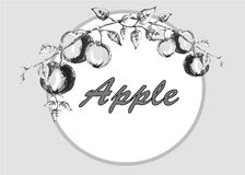 Graphic drawing apples on a branch with leaves in a circle Royalty Free Stock Photo