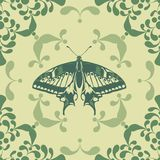 Graphic element with butterfly Royalty Free Stock Images