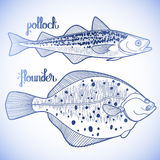 Graphic fish collection Royalty Free Stock Images