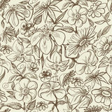 Graphic floral seamless pattern Stock Photos