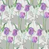 Graphic flowers blue tulip with lily on a gray background. Floral seamless pattern. Bouquet handmade  background pattern  watercolor color floral original Stock Image
