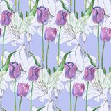 Graphic flowers lily and tulip on a blue background. Floral seamless pattern. Bouquet handmade  background pattern seamless watercolor color floral original Royalty Free Stock Image