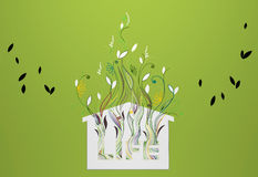 Graphic growing plants Royalty Free Stock Images