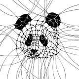 Graphic illustration with panda. Graphic monochrome illustration with head of panda Stock Photography