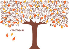 Graphic image collection of tree. seasons. Autumn.  illustration Royalty Free Stock Image