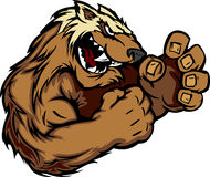 Graphic Image of a Wolverine or Badger Mascot. Wolverine Badger Fighting Mascot Body Vector Illustration Royalty Free Stock Photo