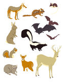 Graphic Images of Mammals. Graphic representation of popular North American mammels Stock Photo