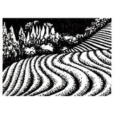 Tea fields of Japan. Graphic landscape of Japanese tea fields Stock Images