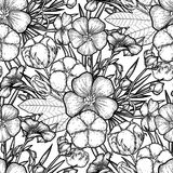 Graphic linen and cotton pattern. Graphic linen and cotton plants. Vector floral seamless pattern. Coloring book page for adults and kids Royalty Free Stock Photos