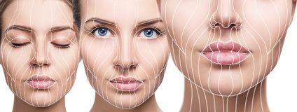 Graphic lines showing facial lifting effect on skin. Stock Image
