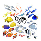 Graphic ocean fish Royalty Free Stock Image