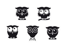 Graphic owls Stock Image