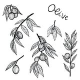 Graphic pattern with leafs. Yellow backgraund. Black and white leafs vector illustration