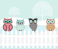 Graphic patterned set of Owls Royalty Free Stock Photo