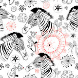 Graphic patterns of zebras Royalty Free Stock Photography
