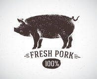 Graphic pig. Graphic pig and labeled: Fresh pig. Vector illustration drawn, by hand. Vector can be used as labels and packaging vector illustration