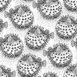 Graphic puffer fish pattern. Graphic puffer fish iseamless pattern. Sea hedgehog. Sea and ocean creature in black and white colors. Vector element for seafood Royalty Free Stock Photo