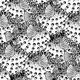 Graphic puffer fish pattern. Graphic puffer fish iseamless pattern. Sea hedgehog. Sea and ocean creature in black and white colors. Vector element for seafood Royalty Free Stock Photography