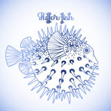 Graphic puffer fish Royalty Free Stock Photo