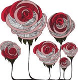 Graphic roses Royalty Free Stock Image