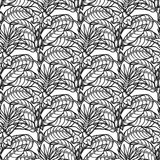 Graphic sesame pattern. Graphic sesame flowers. Vector natural seamless pattern. Coloring book page for adults and kids Royalty Free Stock Photography