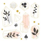 Graphic set of abstract geometrical shapes with plants. Abstract crystals with plants nside on white background. Vector hand drawn illustration vector illustration