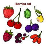 Graphic set with different colored berries. royalty free illustration