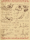 Graphic set with fantasy monster skulls, math formulas and mystic symbols Stock Images