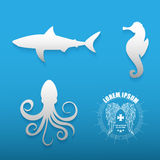 Graphic set of various sea animals contours. Graphic set of various sea animals white contours on a blue background with logo. Vector illustration Royalty Free Stock Photo