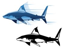 Graphic shark. Stylized shark vector illustration in two color variations Stock Image