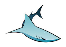 Graphic of shark. Cartoon-style graphic of shark against white background Stock Photo