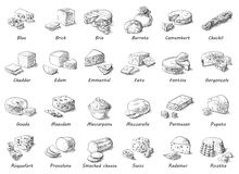 Graphic sketch of different cheeses. Stock Image