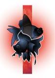 Graphic telescope fish Stock Photo