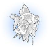 Graphic telescope fish Stock Image
