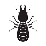 Graphic termite, vector. Graphic termite on white background Royalty Free Stock Image