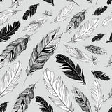 Graphic texture of feathers Royalty Free Stock Photography