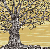 Graphic tree. Old graphic tree with twisted roots on a brown background Stock Photos