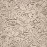 Graphic vanilla pattern Stock Images