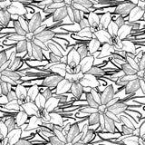 Graphic vanilla pattern Royalty Free Stock Photo