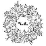 Graphic vanilla wreath Royalty Free Stock Photo