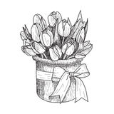 Graphic vector illustration of tulip. Hand drawn artwork. Love concept for wedding invitations, cards, tickets Royalty Free Stock Photography