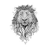 Graphic vector lion. Royalty Free Stock Image