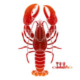 Graphic vector lobster Royalty Free Stock Image