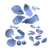 Graphic vector mussels, oysters and scallops Royalty Free Stock Image