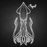 Graphic vector squid Stock Photo
