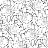 Graphic vector sunfish pattern Stock Photography