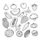 Graphic Veggies and fruits, vector Stock Photos